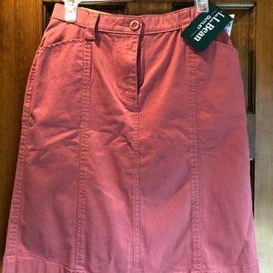 Skirt - NWT